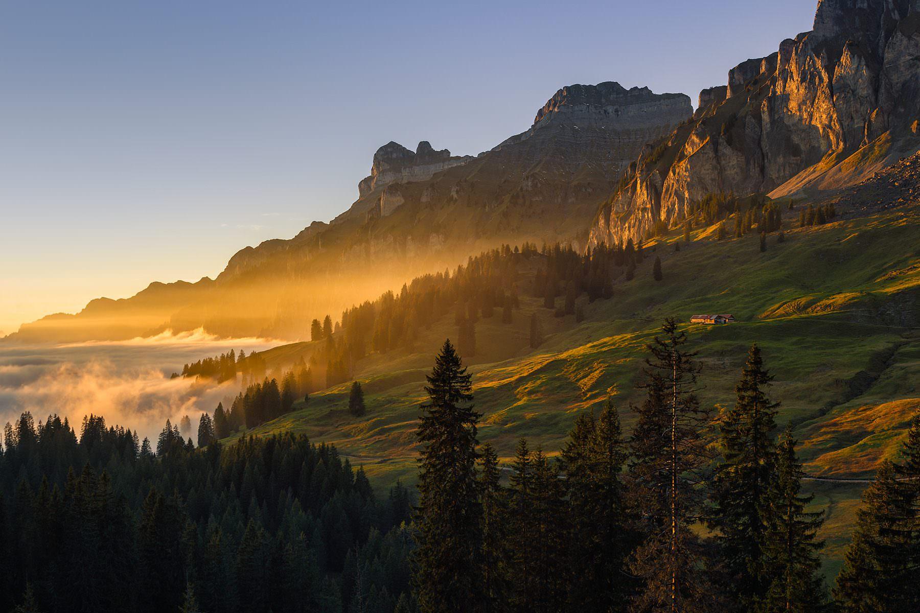 Goldener Herbst hoch über dem Muotathal / Pragelsass