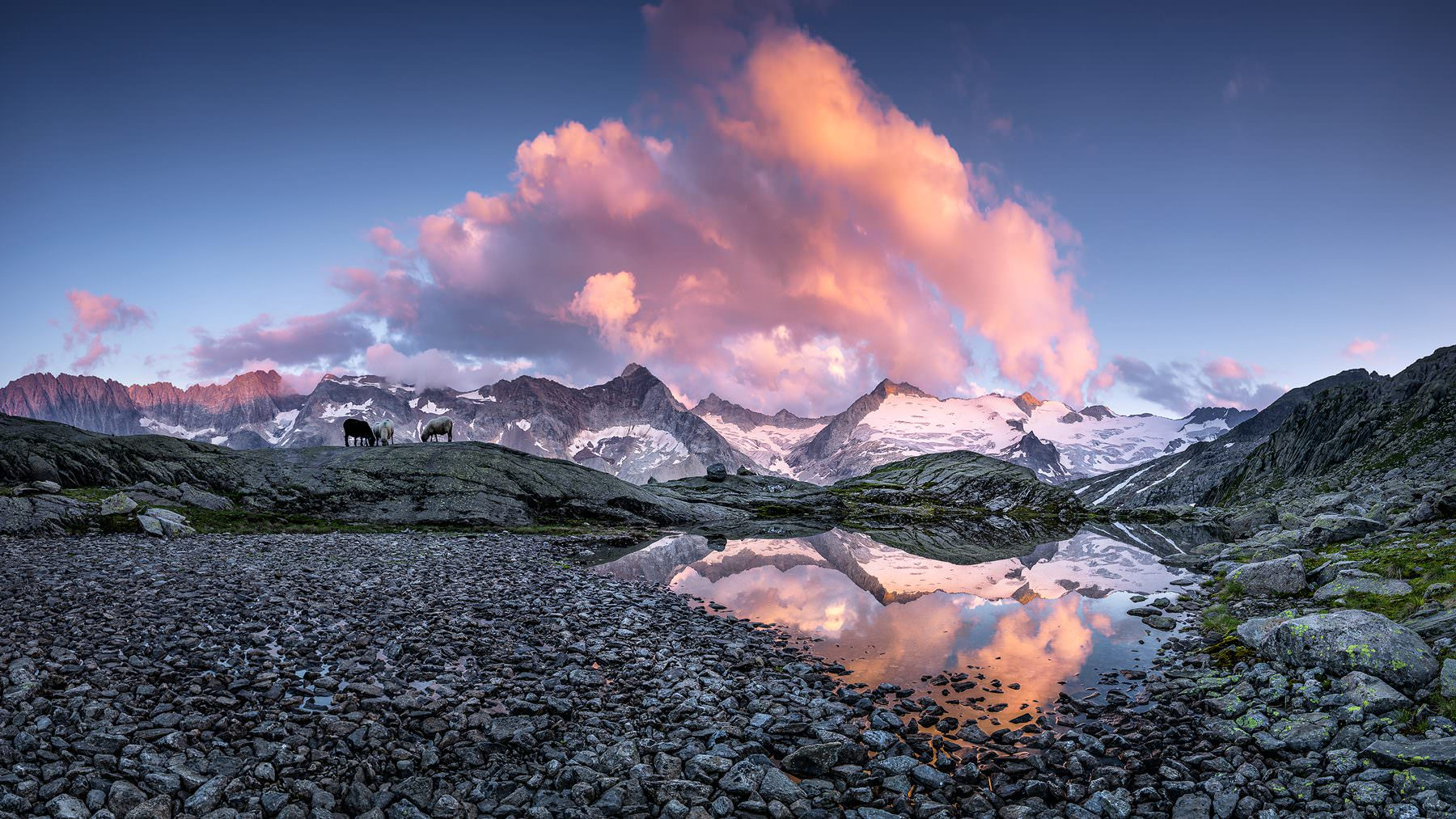 Sonnenuntergang - im Gauligebiet mit Blick auf den Hienderstock und Ewigschneehorn