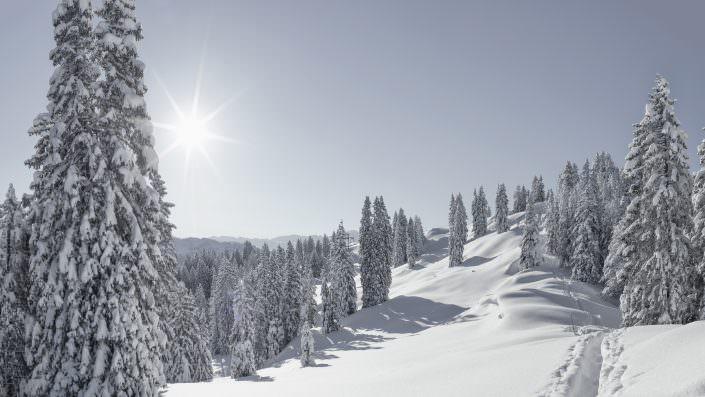 Winterliche Szenerie auf dem Weg zum Furggelenstock / Ibergeregg