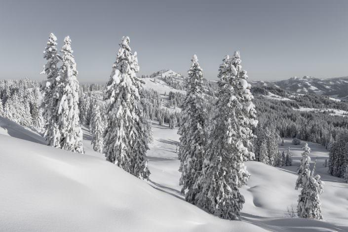 Air-Shots.ch / Winterzauber / Ibergeregg / Schwyz
