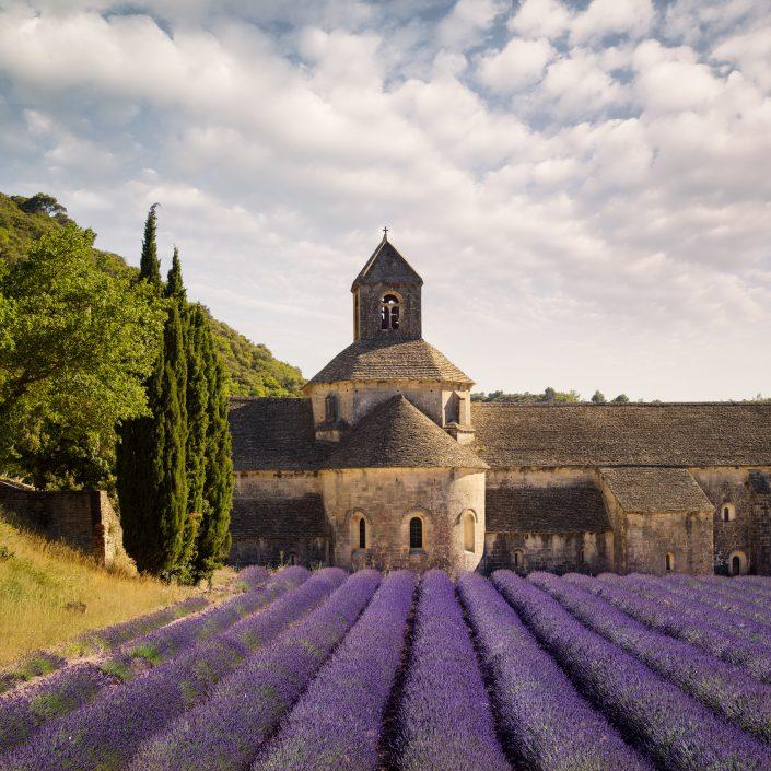 Fine Art - France - Provence - Grodes - Abbaye de Sénanque © by Gerry Pacher