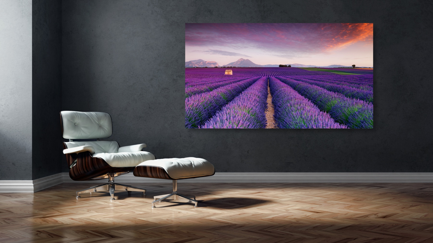 France - Provence - Valensole - Lavender - when the bees call it a day!