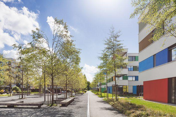 """Wohnungssiedlung """"Im Vieri"""" - eine 4 Generationen Siedlung in Schwerzenbach © by Gerry Pacher"""