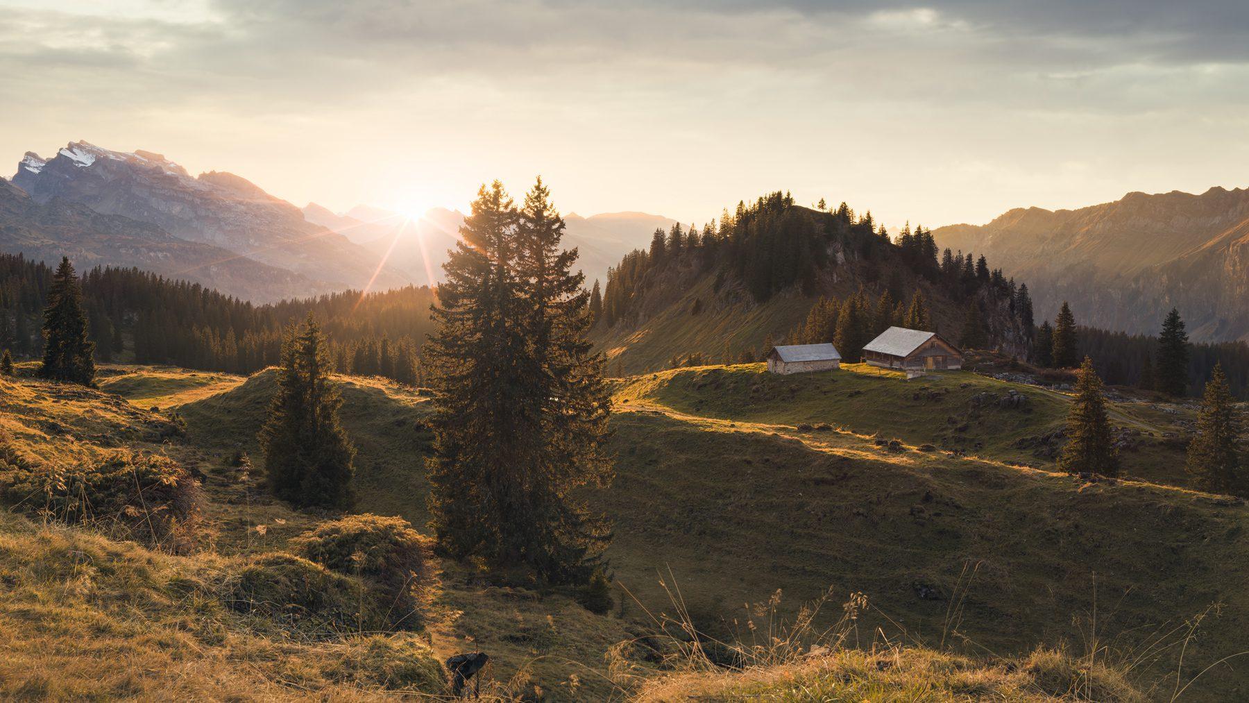 Herbstlicher Sonnenuntergang auf der Bödmeren Alp / Muotathal mit Blick auf Roggenstöckli, Wasserberg, die Rigi, Hoch Ybrig und den Bödmeren Urwald